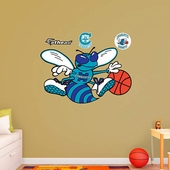 Charlotte Hornets Wall Decorations