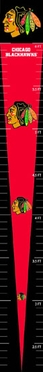 Chicago Blackhawks Growth Chart