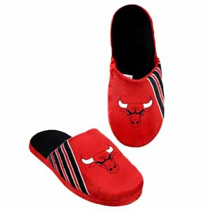 Chicago Bulls 2012 Team Stripe Logo Slippers - Large