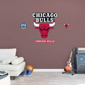 Chicago Bulls Wall Decorations