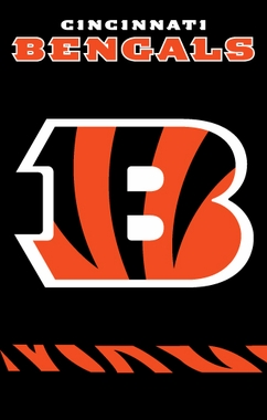 Cincinnati Bengals Applique Banner Flag