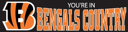 Cincinnati Bengals Eight Foot Banner