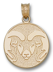 Colorado State 14K Gold Pendant