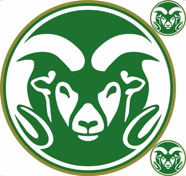 Colorado State Wallmarx Large Wall Decal