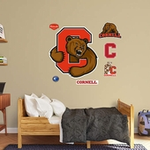 Cornell Wall Decorations