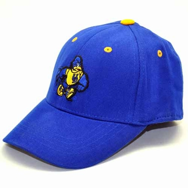 Delaware Youth FlexFit Hat