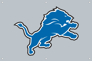 Detroit Lions 2 x 3 Horizontal Applique Fan Banner