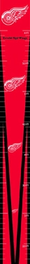 Detroit Red Wings Growth Chart