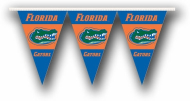 Florida 25 Foot String of Party Pennants (P)
