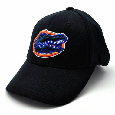Florida Black Premium FlexFit Baseball Hat