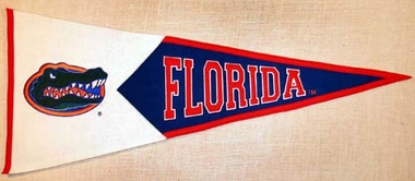 Florida Large Wool Pennant