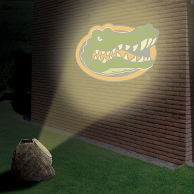 Florida Logo Projection Rock