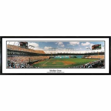 Florida Marlins Strike One Framed Panoramic Print