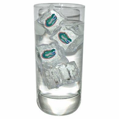 Florida Set of 4 Light Up Ice Cubes
