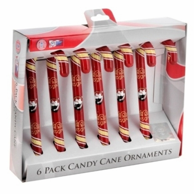 Florida State 2010 Set of 6 Candy Cane Ornaments