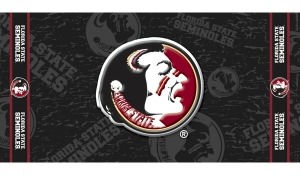 Florida State Beach Towel