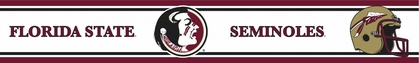 Florida State Peel and Stick Wallpaper Border