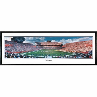 Florida The Swamp Framed Panoramic Print