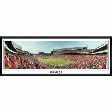 Georgia Bulldogs Framed Panoramic Print