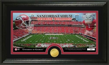 "Georgia Bulldogs University of Georgia ""Stadium"" Bronze Coin Panoramic Photo Mint"