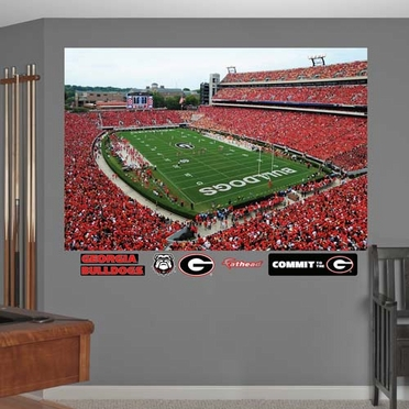 Georgia Stadium Fathead Wall Graphic