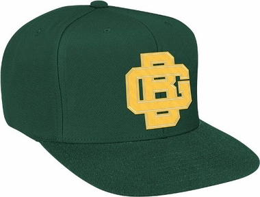 Green Bay Packers Basic Logo Snap Back Hat
