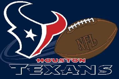 Houston Texans 20 x 30 Rug