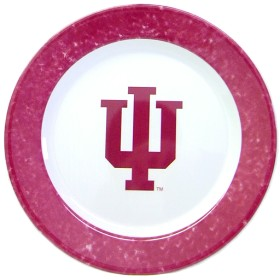 Indiana 4 Piece Dinner Plate Set