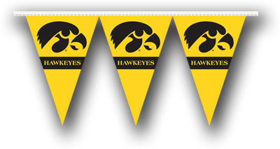 Iowa 25 Foot String of Party Pennants (P)
