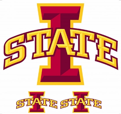 Iowa State Wallmarx Large Wall Decal