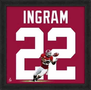 "Mark Ingram, Alabama Crimson Tide UNIFRAME 20"" x 20"""
