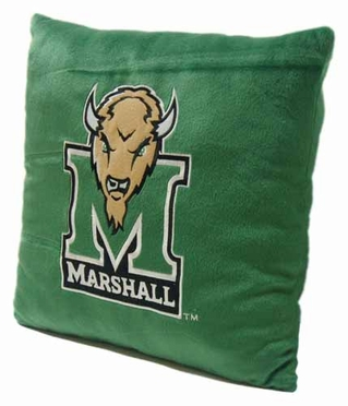 Marshall 15 Inch Applique Pillow