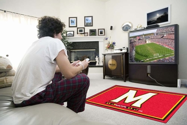Maryland 4 Foot x 6 Foot Rug