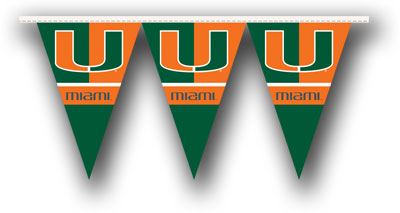 Miami 25 Foot String of Party Pennants (P)