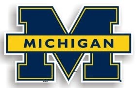 Michigan Individual Car Magnet