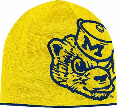 Michigan Reversible Vault Logo Knit Hat