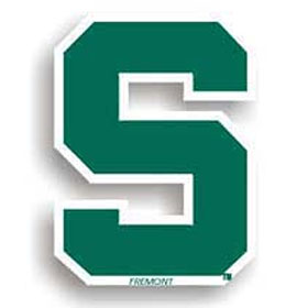 Michigan State 12 Inch Individual Car Magnet