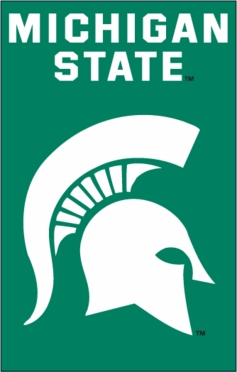 Michigan State Applique Banner Flag