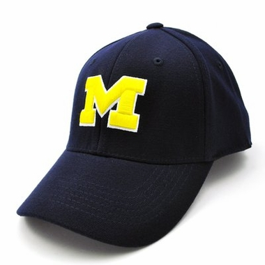 Michigan Team Color Premium FlexFit Hat