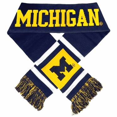 Michigan Wolverines 2012 Team Stripe Knit Scarf