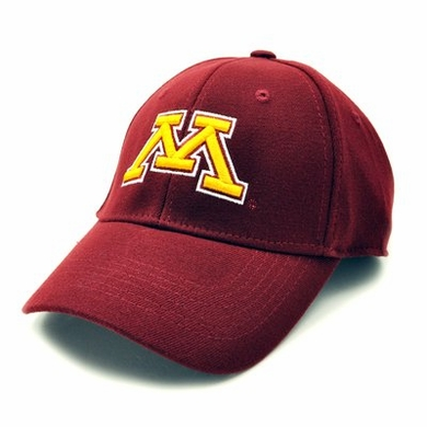 Minnesota Team Color Premium FlexFit Hat