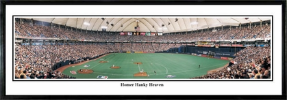 Minnesota Twins Homer Hanky Heaven Framed Panoramic Print