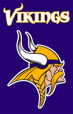 Minnesota Vikings Applique Banner Flag