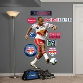 New York Red Bulls Wall Decorations