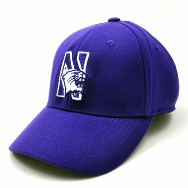 Northwestern Team Color Premium FlexFit Hat