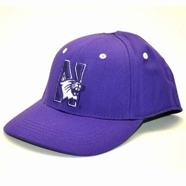 Northwestern Youth FlexFit Hat