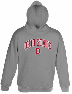 Ohio State Embroidered Hooded Sweatshirt (Grey)