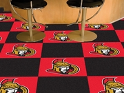 Ottawa Senators Game Room