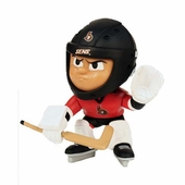 Ottawa Senators Gifts and Games