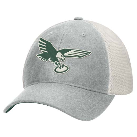 mens philadelphia eagles randall cunningham mitchell & ness green ...